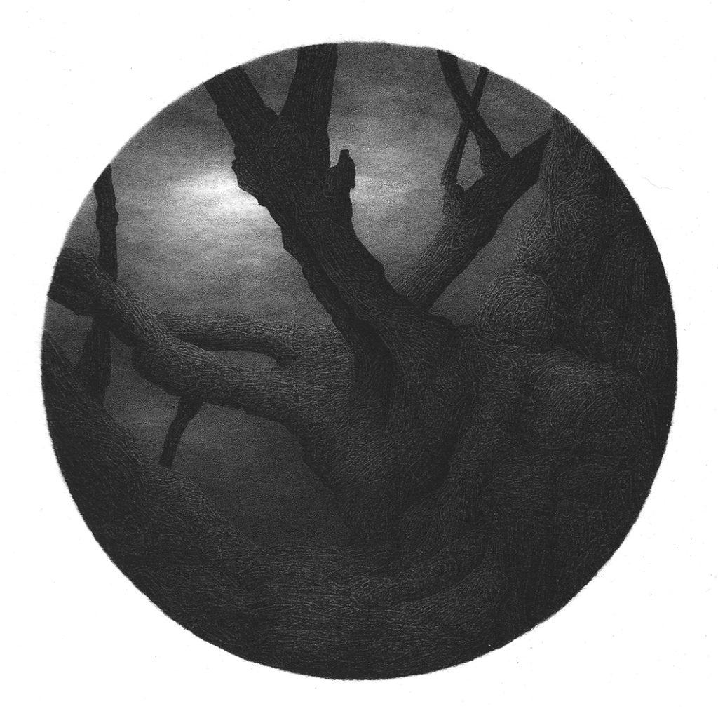 arbre noir-12-2017-D16-150dpi